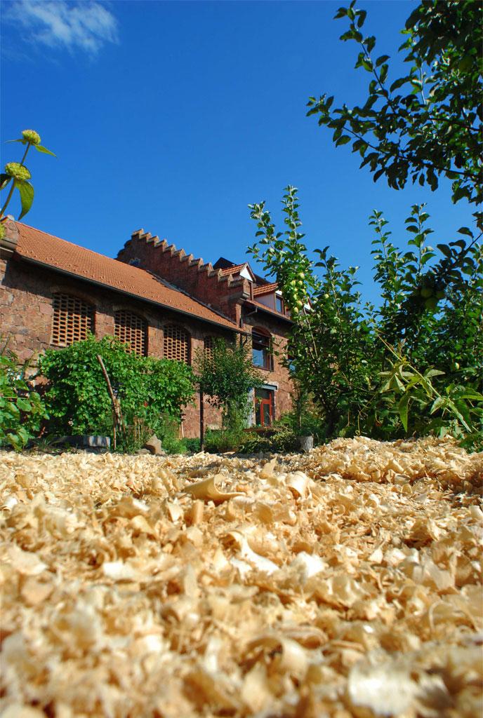 centre d'initiation à la Nature et à l'Environnement de Bussierre Strasbourg - photo PSA